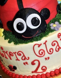 Occasion-Cake-25