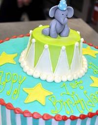 Occasion-Cake-28