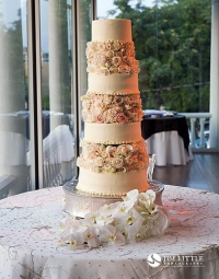 Wedding Cake 201